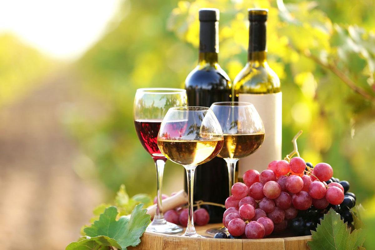 Вино, вино, вино, вино – оно на радость нам дано?